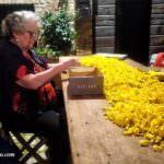 Selezione dei petali per le composizioni